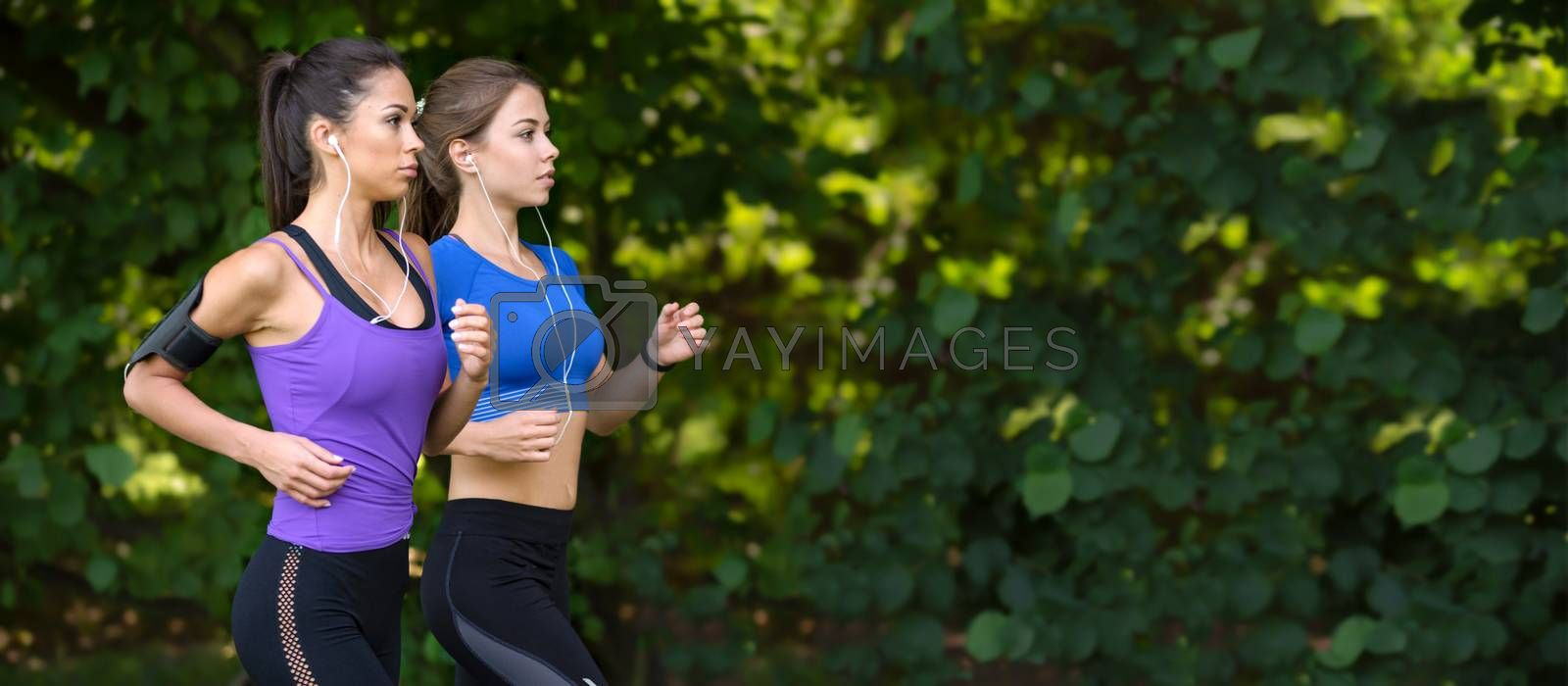 Healthy lifestyle banner - two beautiful fitness girls are jogging in the park on a greenery background (copy space)