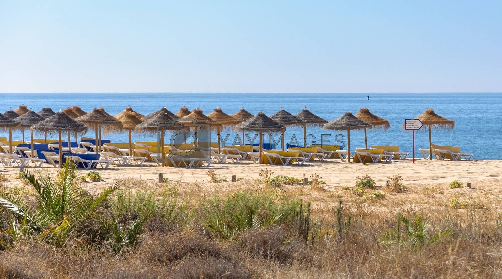 Straw umbrellas and sunbeds on the beach in Vilamoura, Algarve Portugal