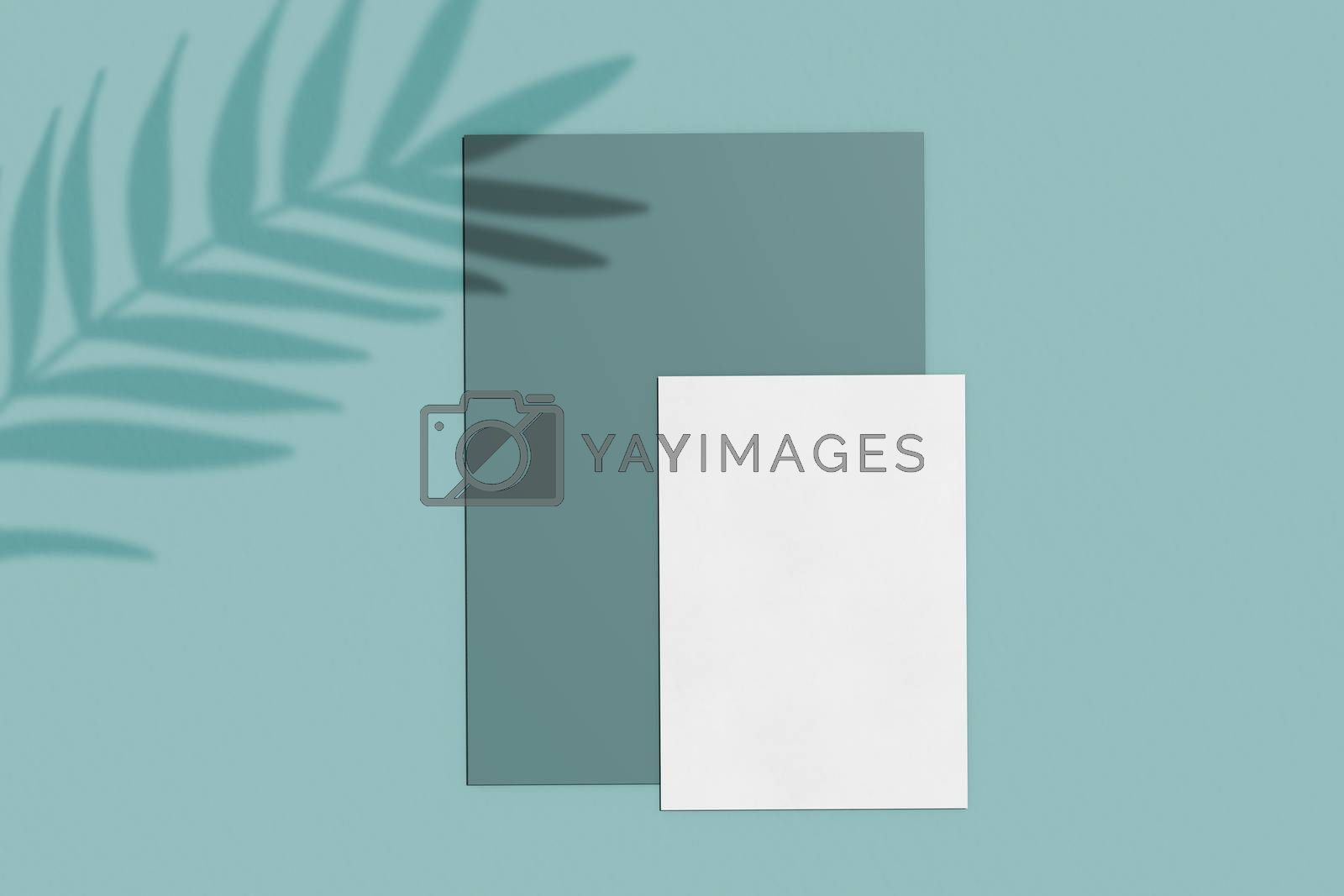 Branding identity mockup of blank business card and paper natural lighting overlay shadows, minimal layout with organic and botanical style