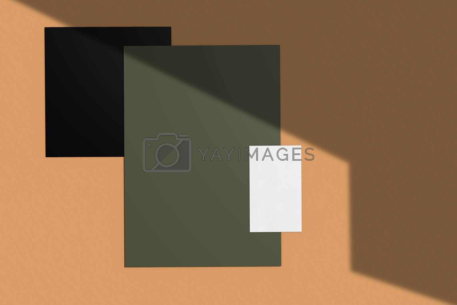 Branding identity mockup of blank business name card and paper natural lighting overlay shadows, minimal layout style