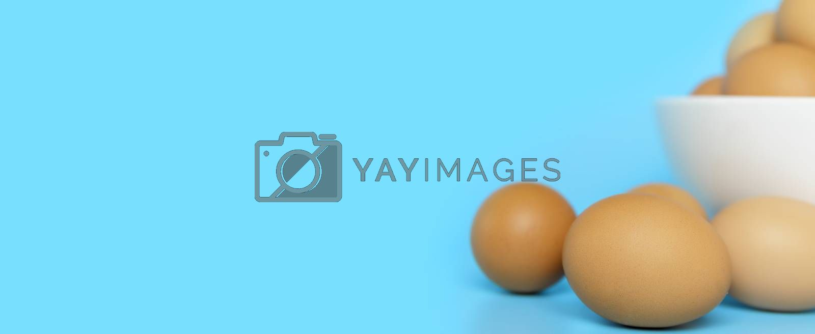 Close up Fresh chicken eggs with blur chicken eggs in white bowl  on blue background with copy space. Uncooked raw eggs  isolated banner.