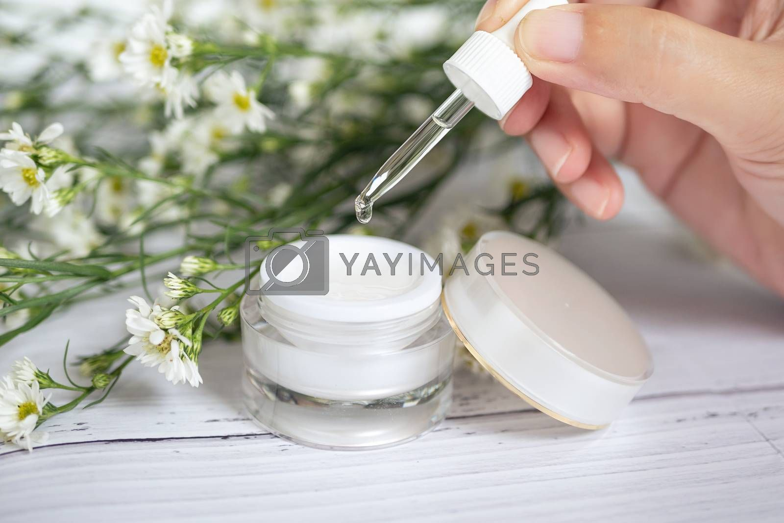 organic natural skincare concept. open blank cosmetic cream jar with white cream texture inside and women hand holding glass dropper for dermatologist testing decorate with white flower at background