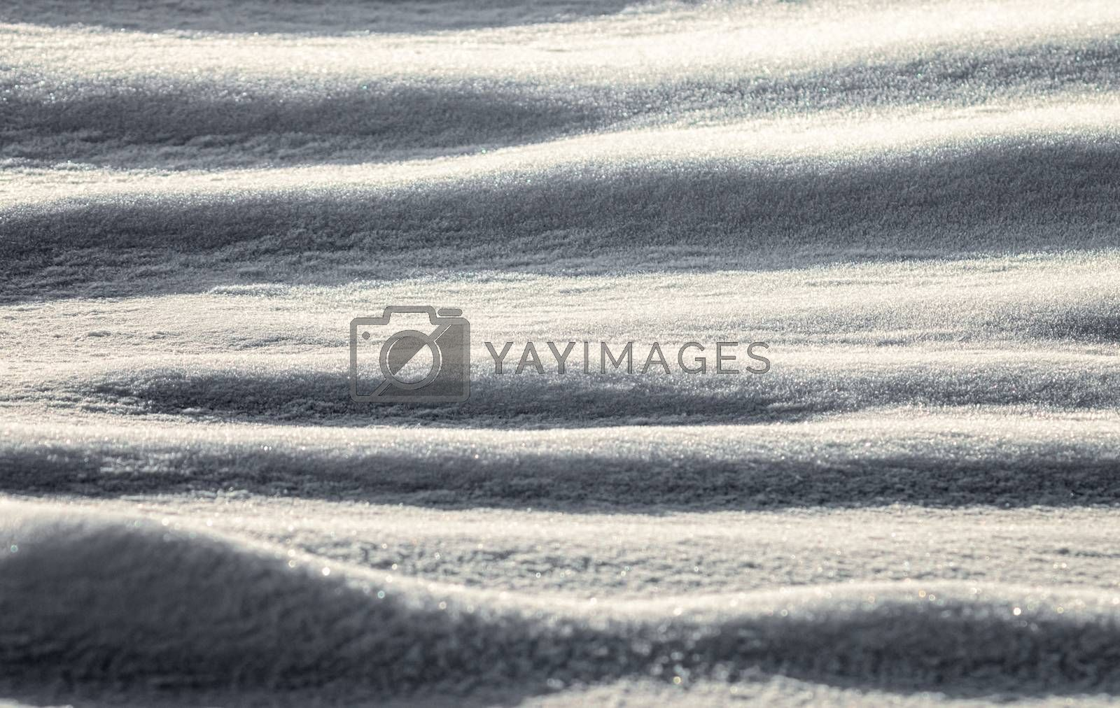 snow field afternoon no people color cold winter background pattern