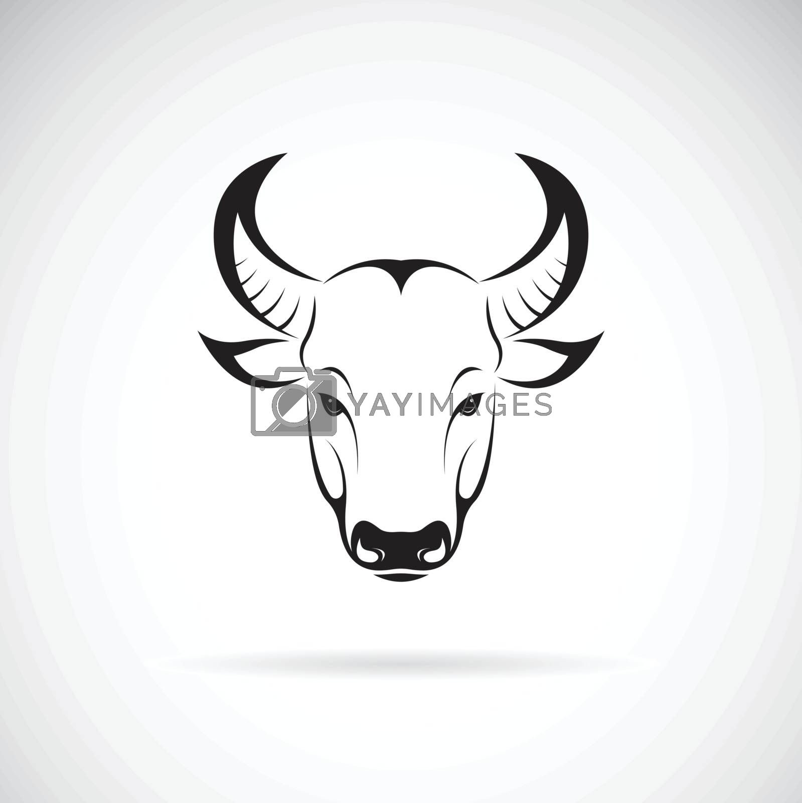 Vector of a bull head design on white background. Wild Animals. Easy editable layered vector illustration.