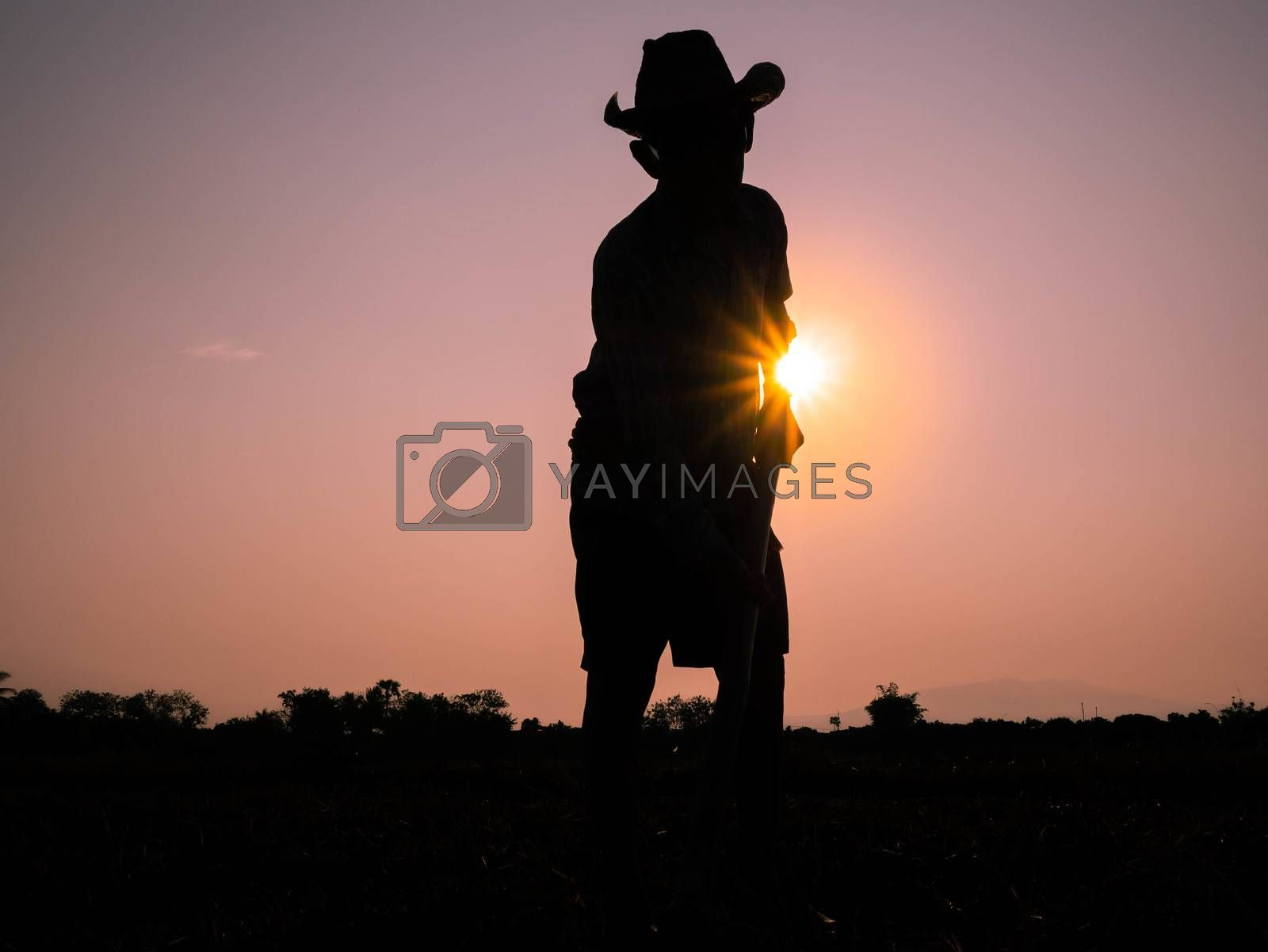 Silhouette of Elderly Asian farmers shoveling and prepare the soil with a spade for planting on sunset background.
