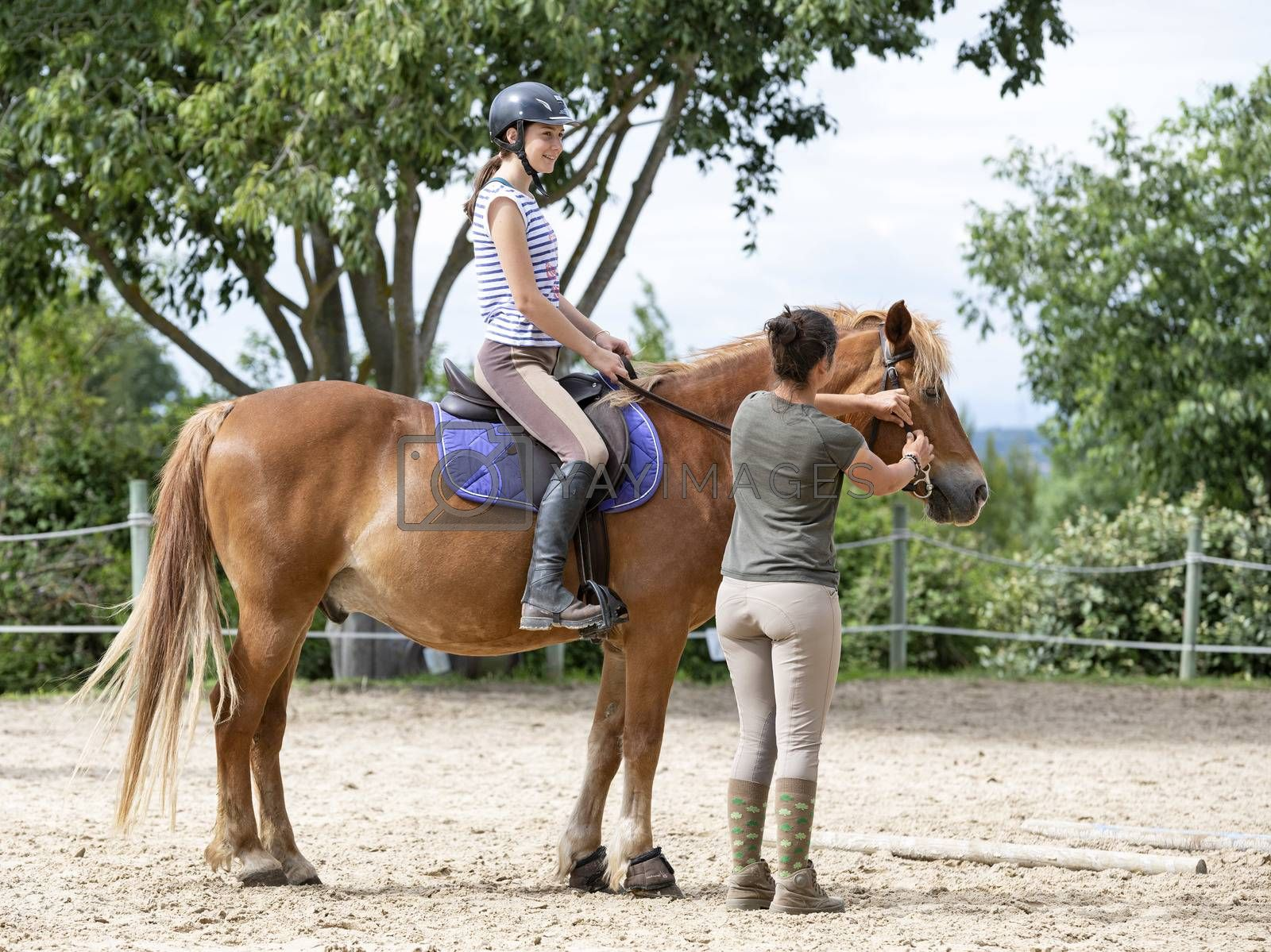 riding girl are training her horse in equestrian center