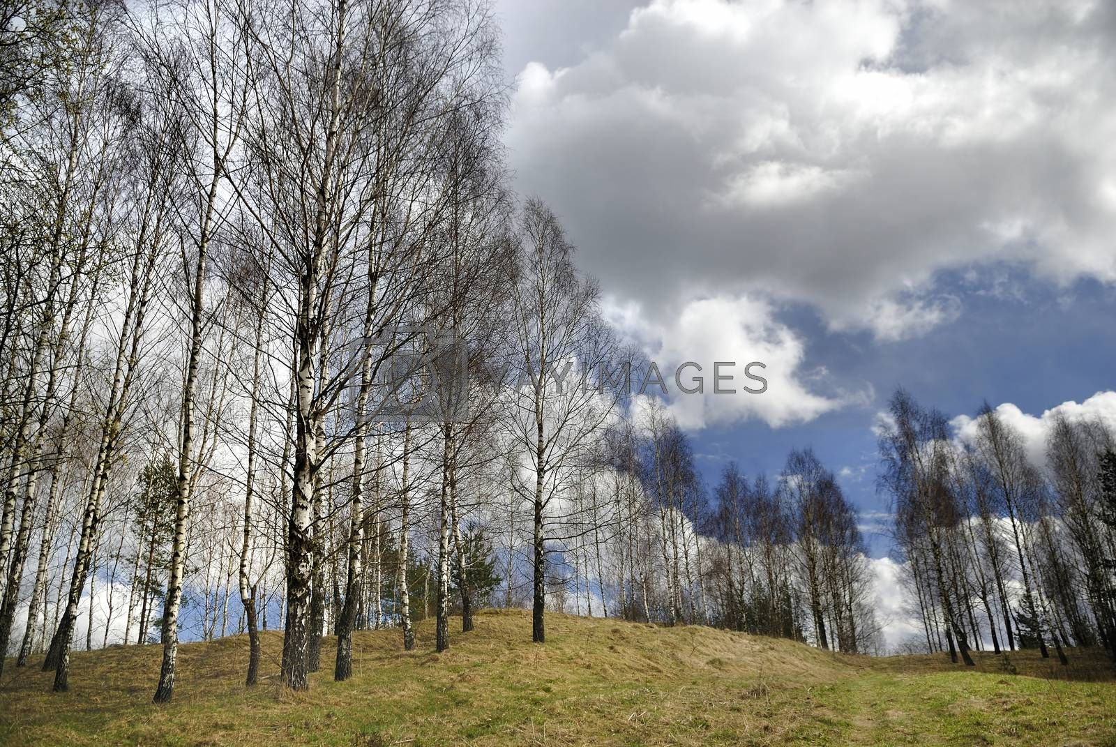 Early spring countryside landscape with beautiful clouds