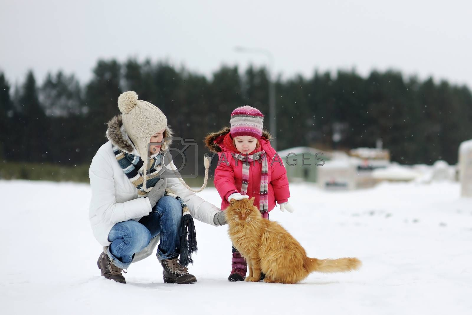 Toddler girl, her mother and a cat on beautiful snowy winter day
