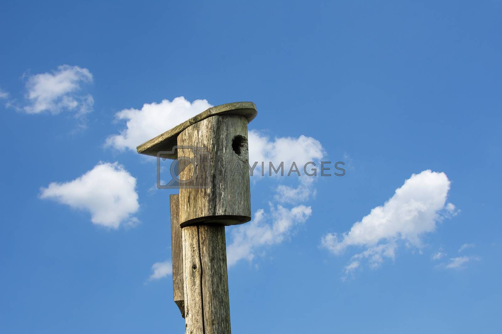 A wooden birdhouse carved from a whole piece of wood and mounted on a wooden pillar