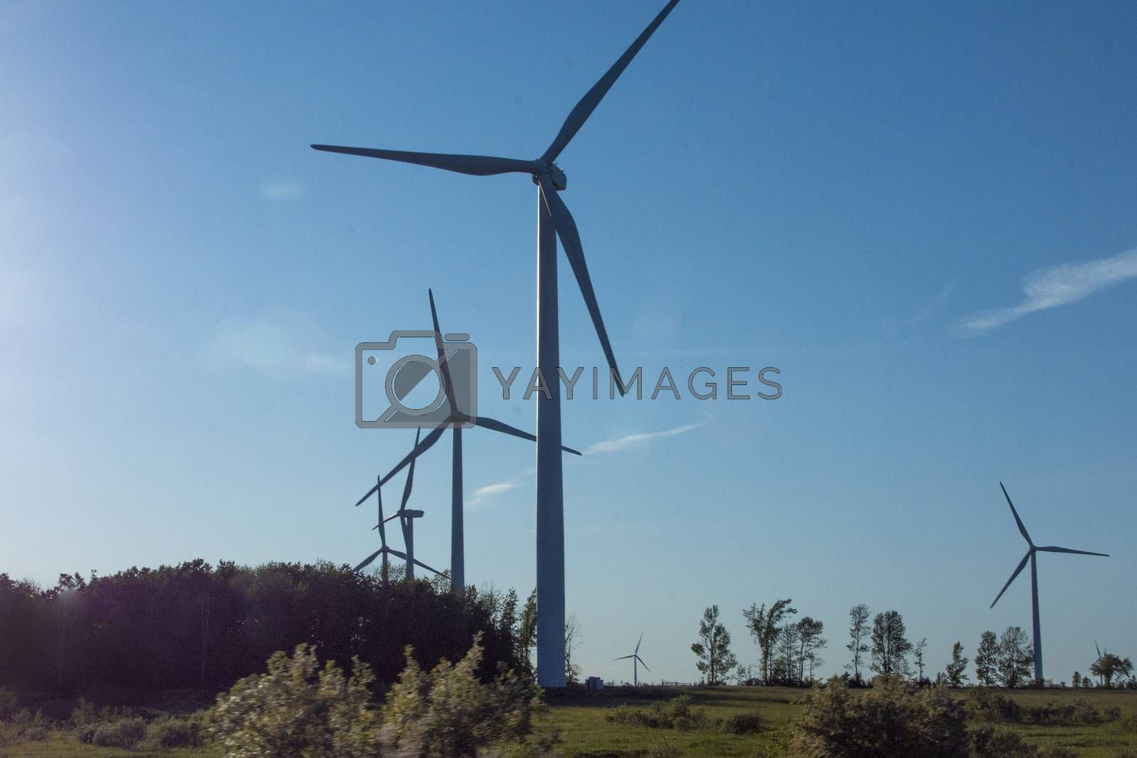 Wind turbine groups installed in open and leeward areas