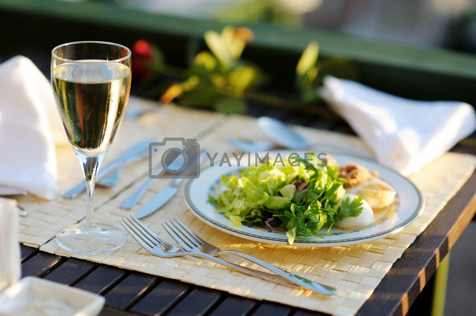 Delicious lettuce plate and glass of wine