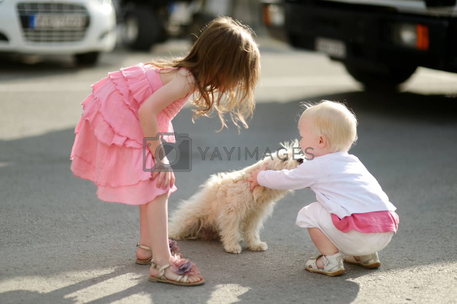 Two adorable girls met a puppy