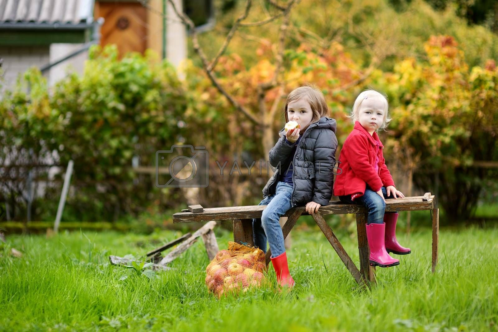 Two sisters sitting on a wooden bench on autumn by maximkabb