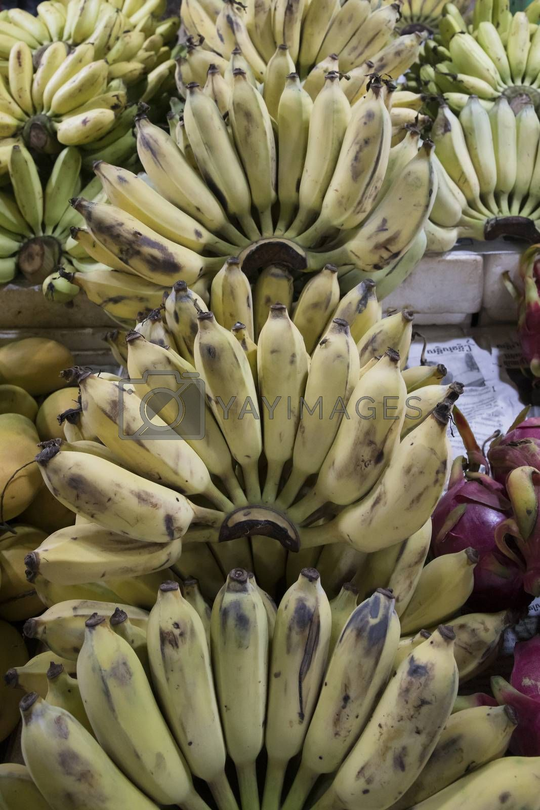 Siem Reap, Cambodia, 28 March 2018. Bananas at the Fresh Food Market of the city