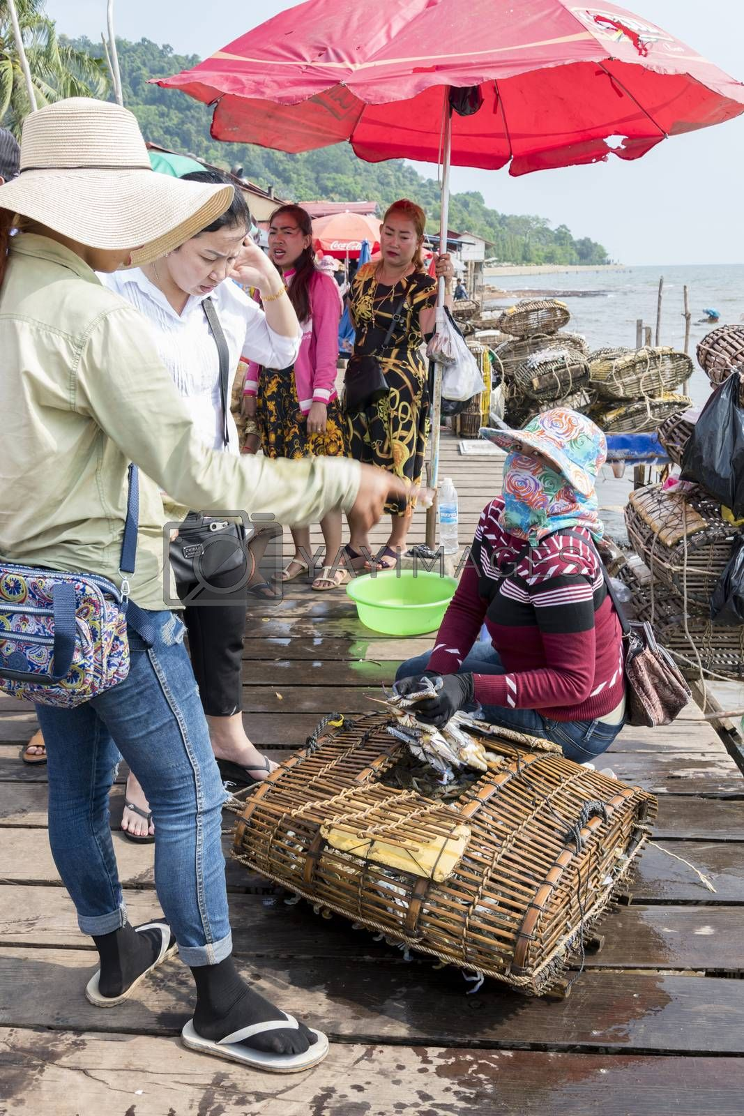 Cambodians ladies buying live crabs at the Crab Market, Krong Kaeb, Kep Province, Cambodia