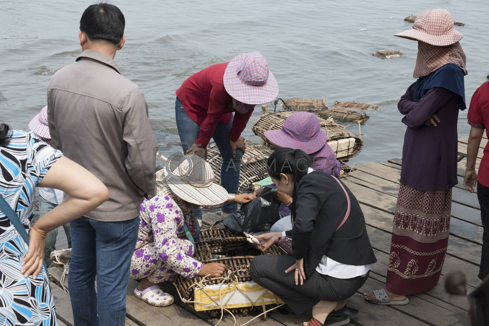 Cambodian lady buying crabs at the local and famous Crab Market of Krong Kaep, Kep Province, Cambodia