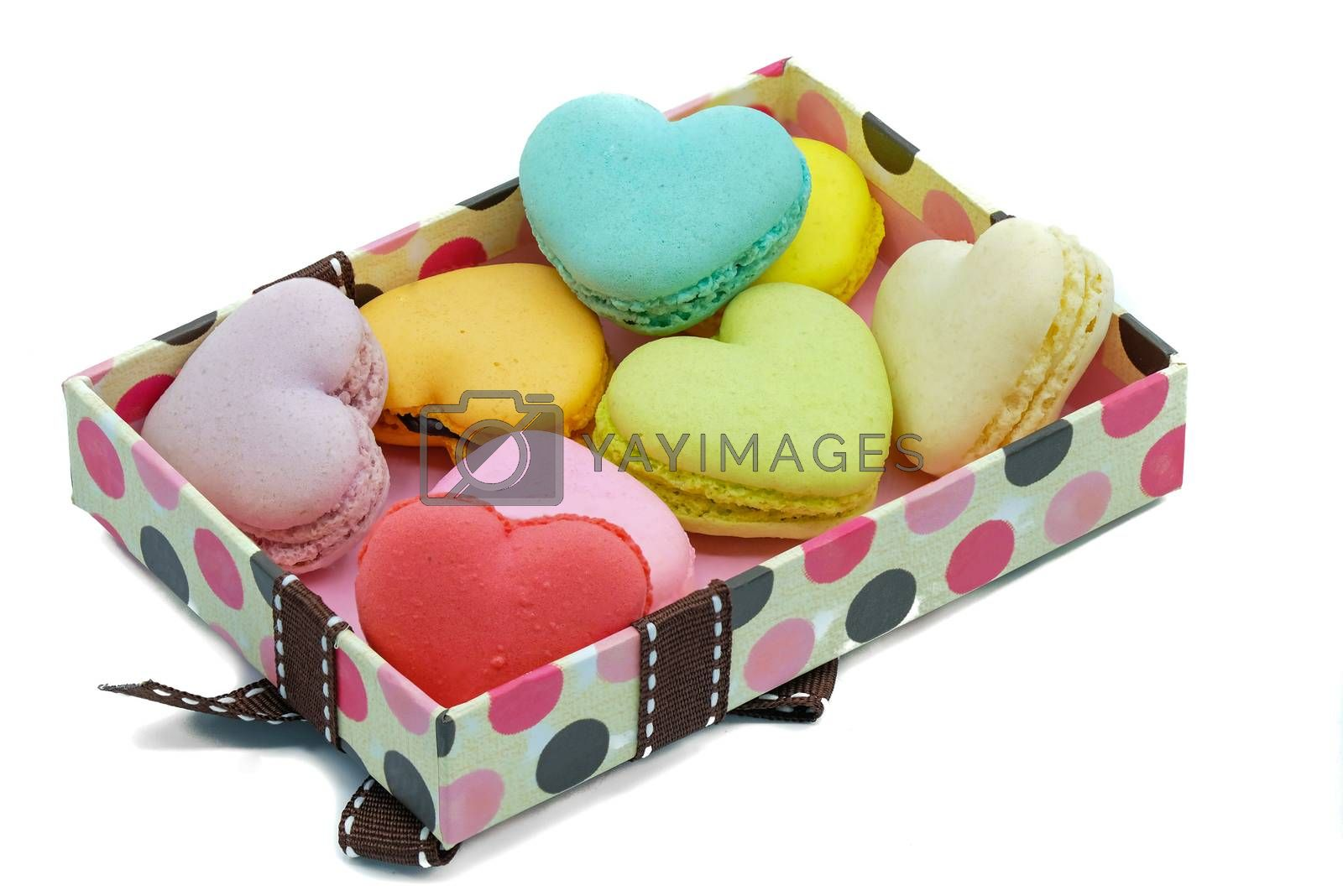 assortments of pastel color macaroons by Nawoot