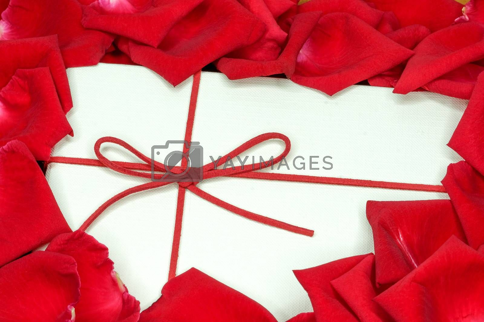 a white box and red rose petals by Nawoot