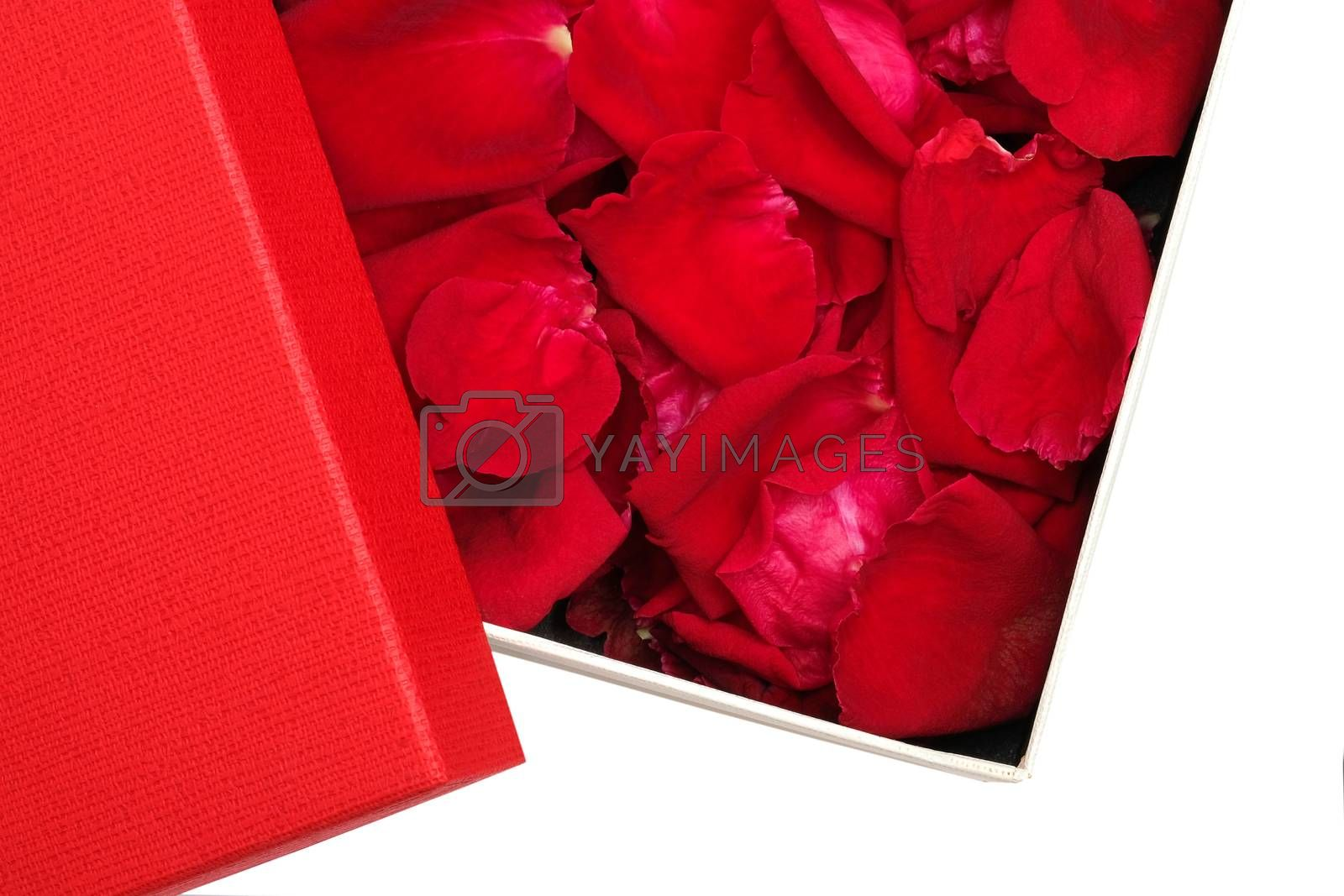 box of red rose petals  by Nawoot