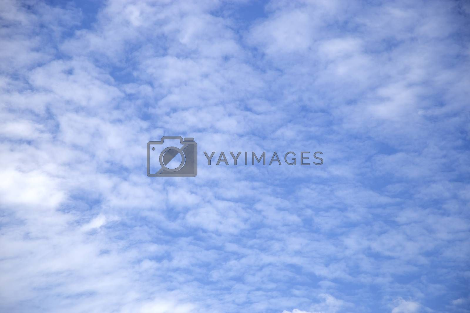 View white cloud with blue sky background
