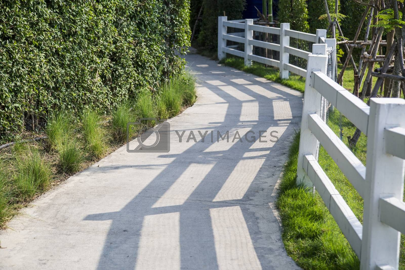 Walkway with white fence in the garden