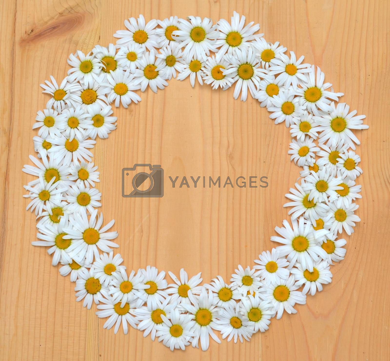 Daisy crown on a wooden background