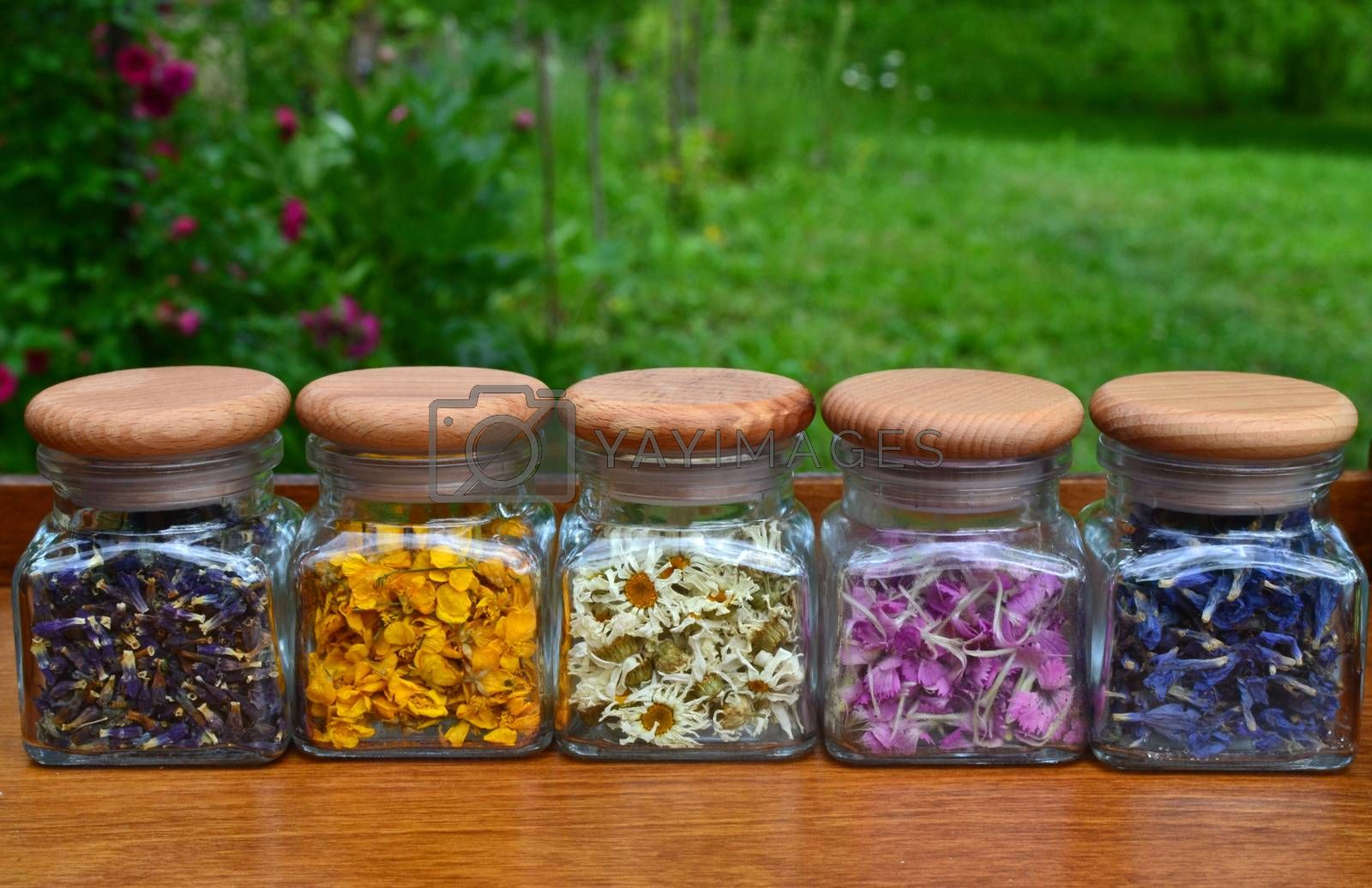 Collection of small transparent jars with colored flowers