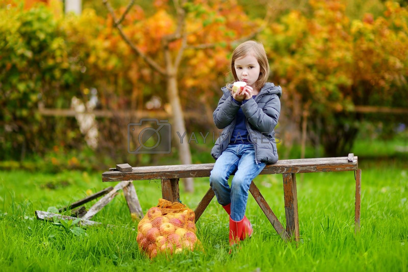 Little girl sitting on a bench on autumn day by maximkabb