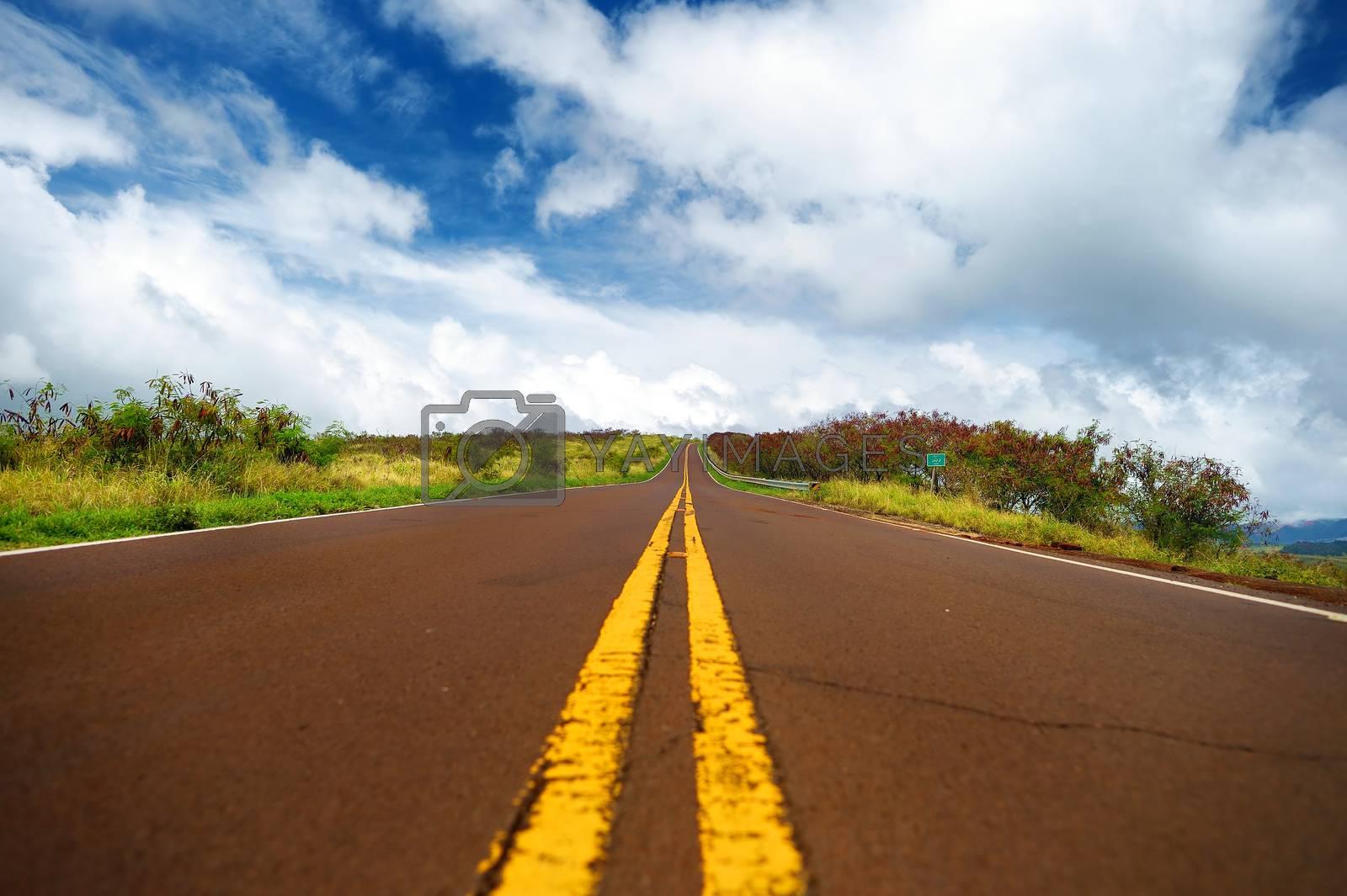Serpentine road winding through the mountains on Kauai, Hawaii