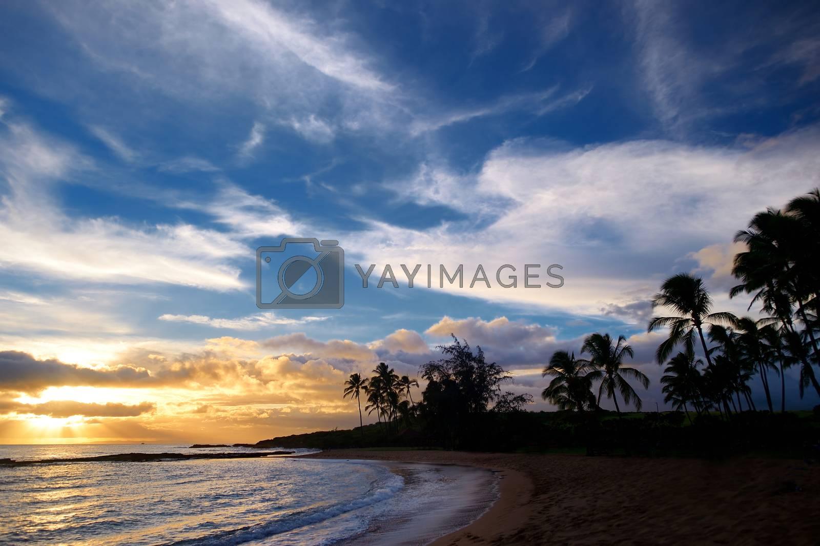 Sunrise with palm trees in Salt Pond Beach Park on Kauai, Hawaii
