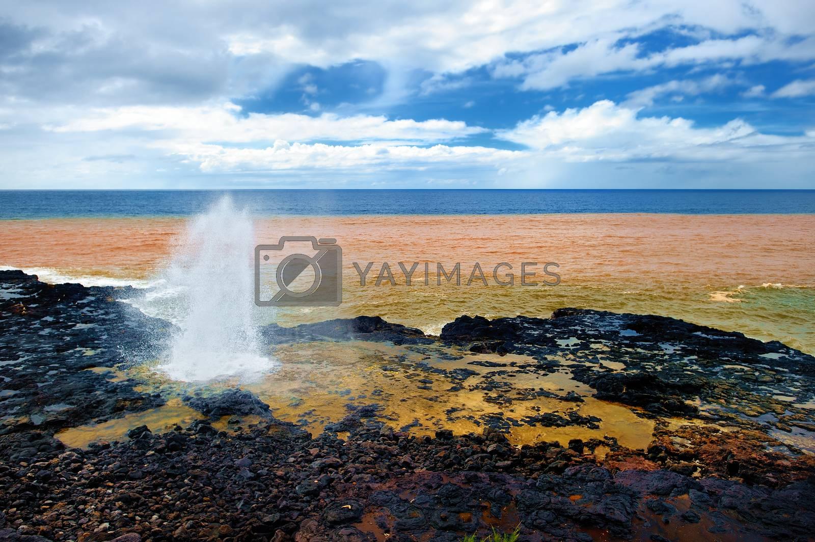 Famous Spouting Horn of the Kauai, Hawaii