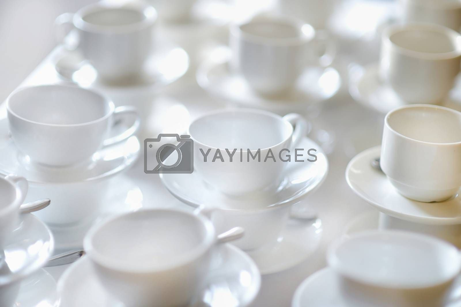 Many rows of pure white cups and saucers by maximkabb