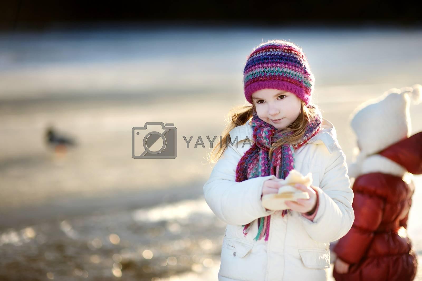 Adorable little girl feeding ducks at winter