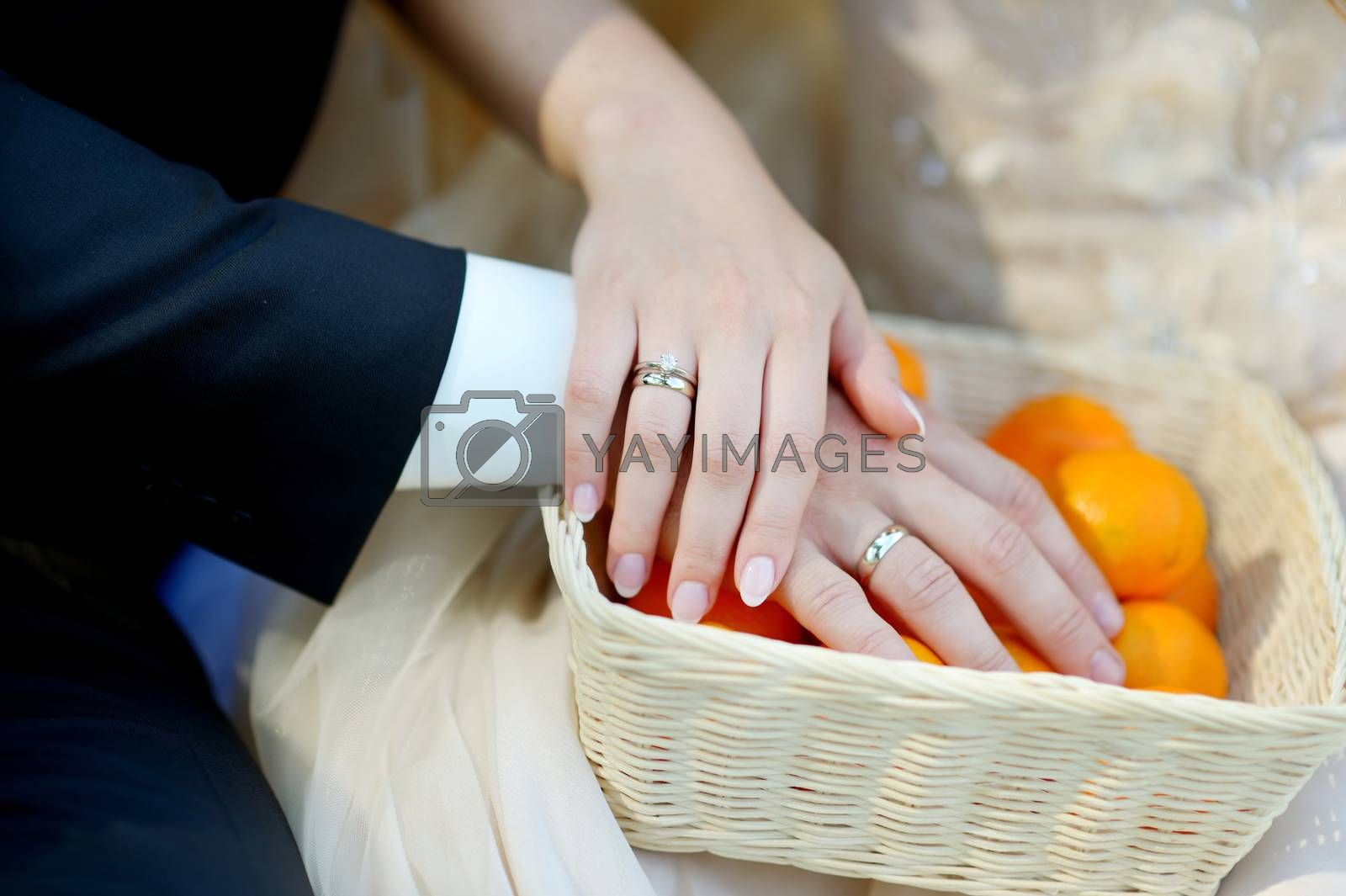 Young bride and groom showing their wedding rings