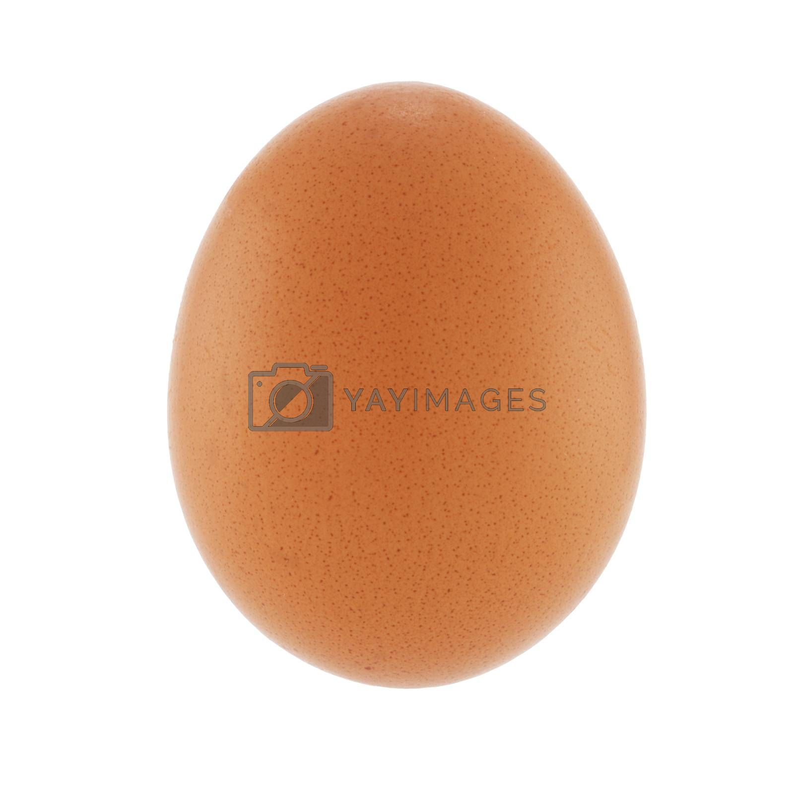 A Brown chicken egg on white with clipping path