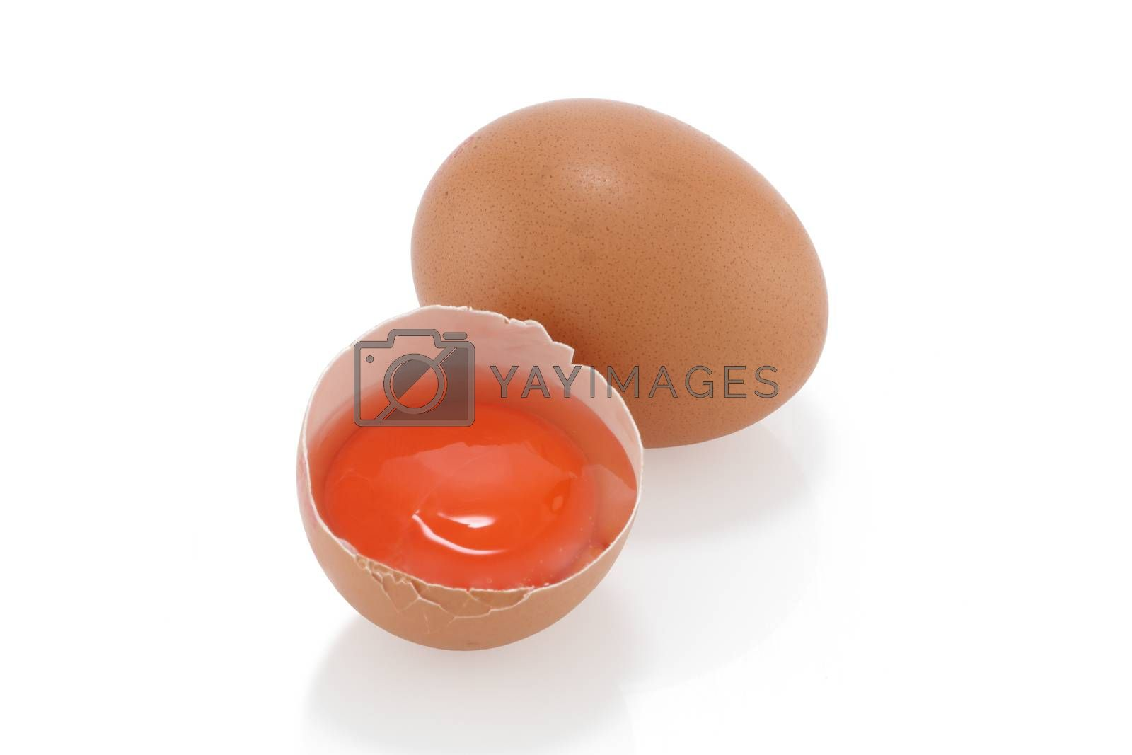 An egg and yolk on a white background
