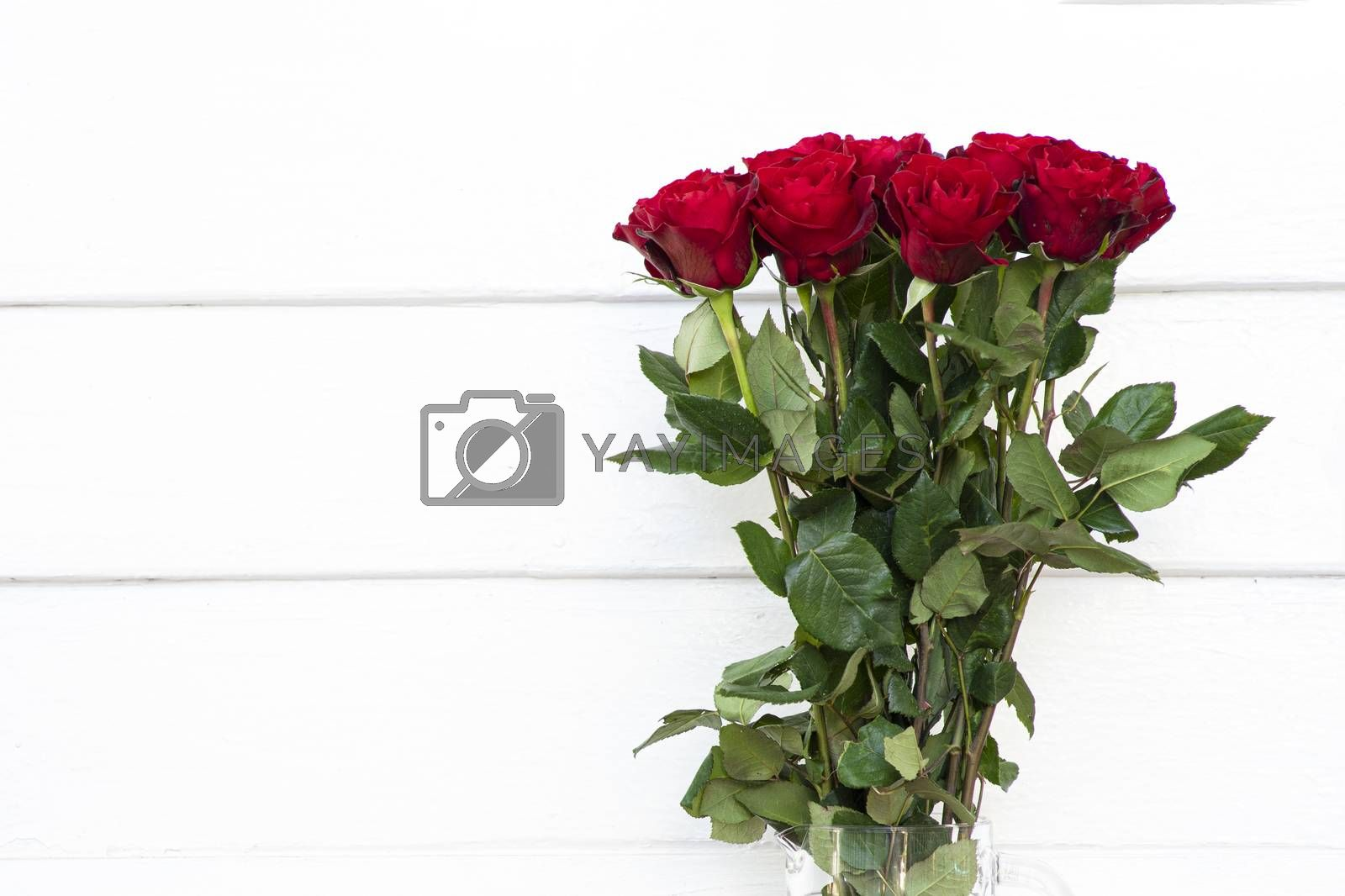blooming bouquet of red roses in a clear glass vase by Nawoot