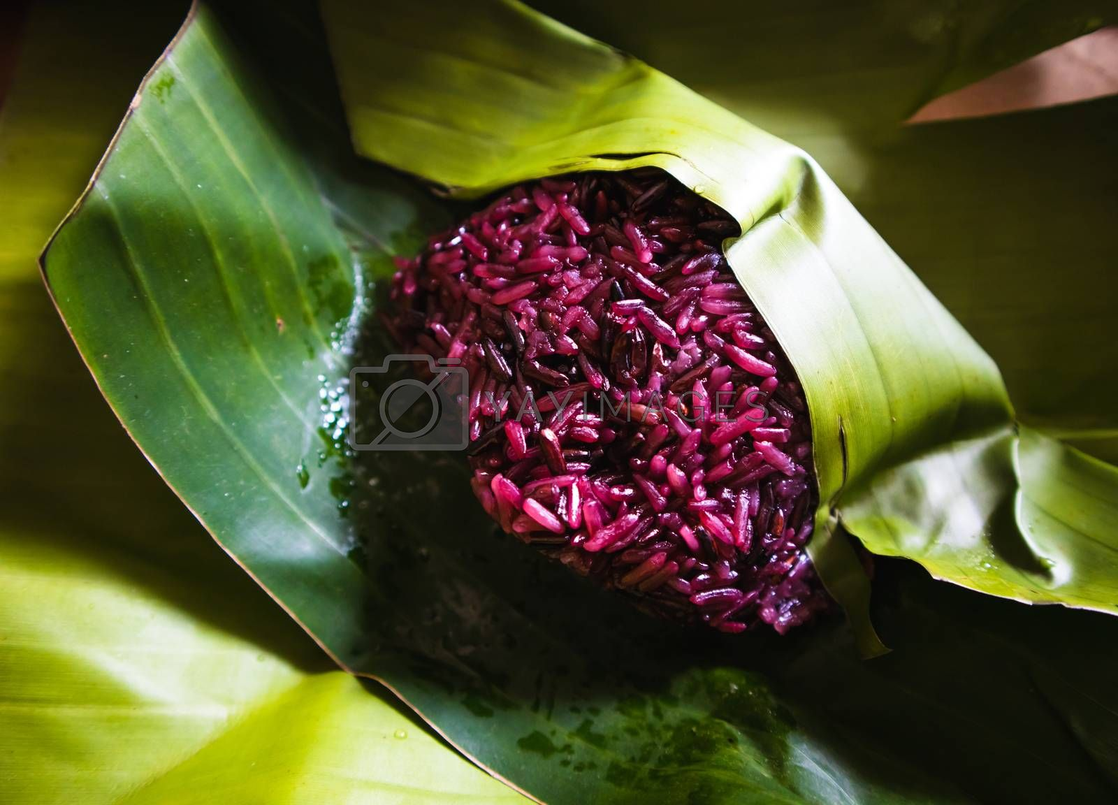 Steamed Purple sticky rice on banana leaf package close up shot. Organic food background concept.