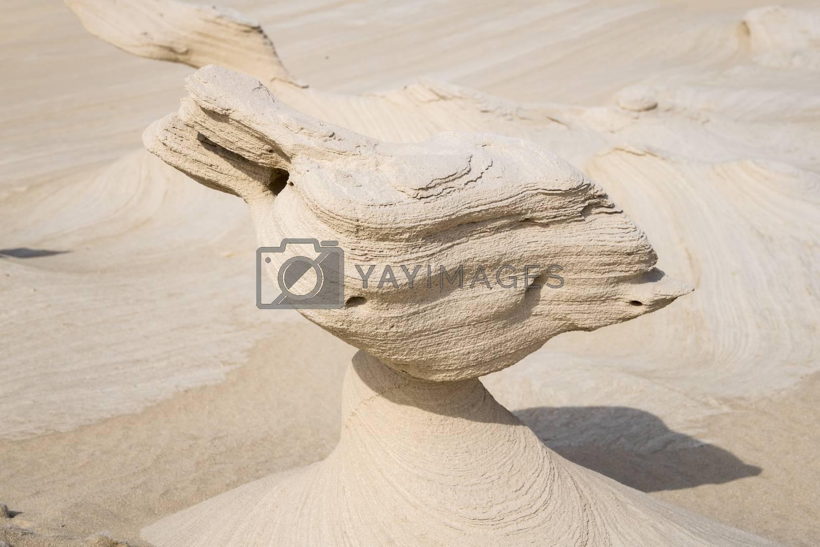 Al Wathba sand stones or Fossil Dunes in the desert of  Abu Dhabi, United Arab Emirates
