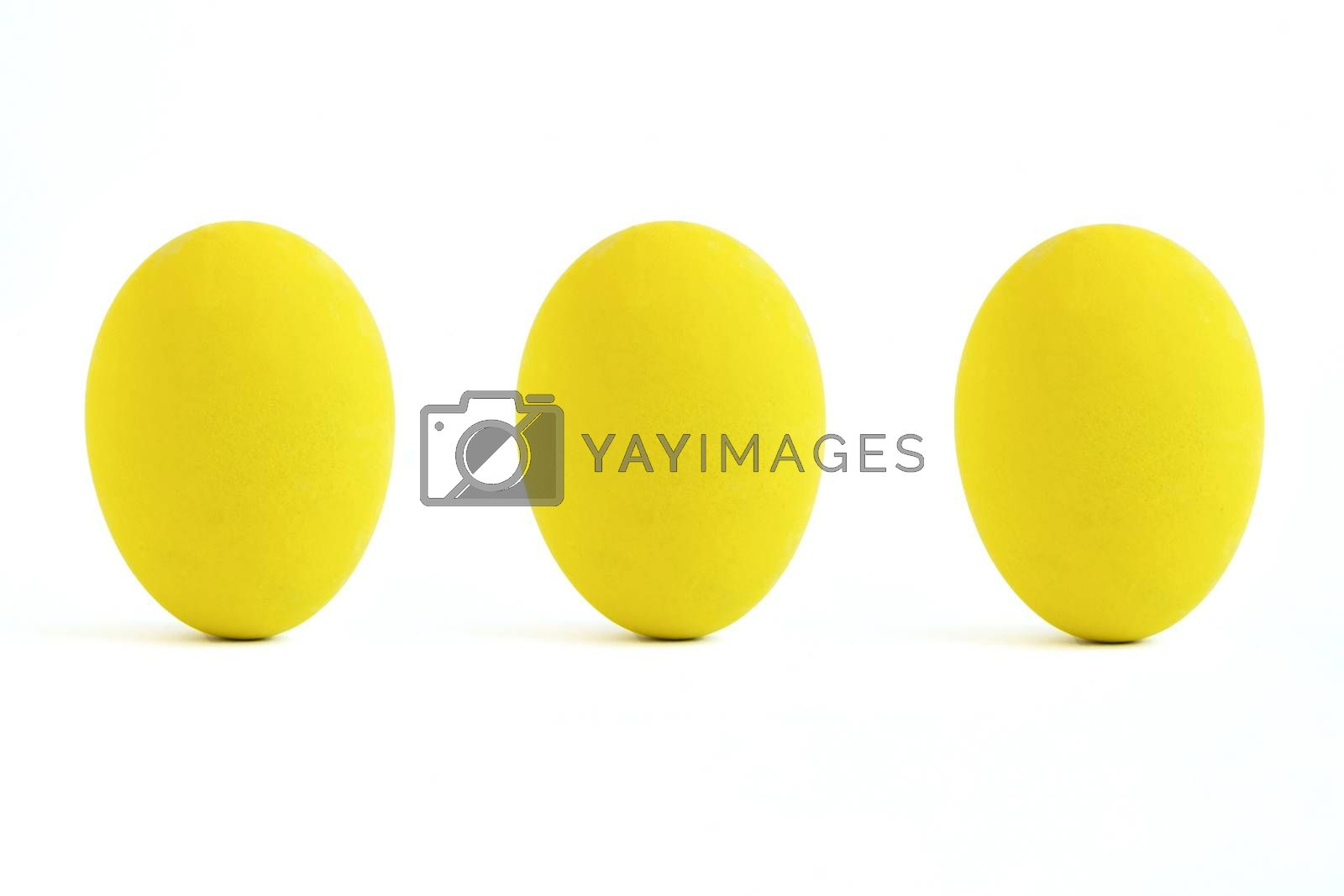 yellow color paint eggs by Nawoot