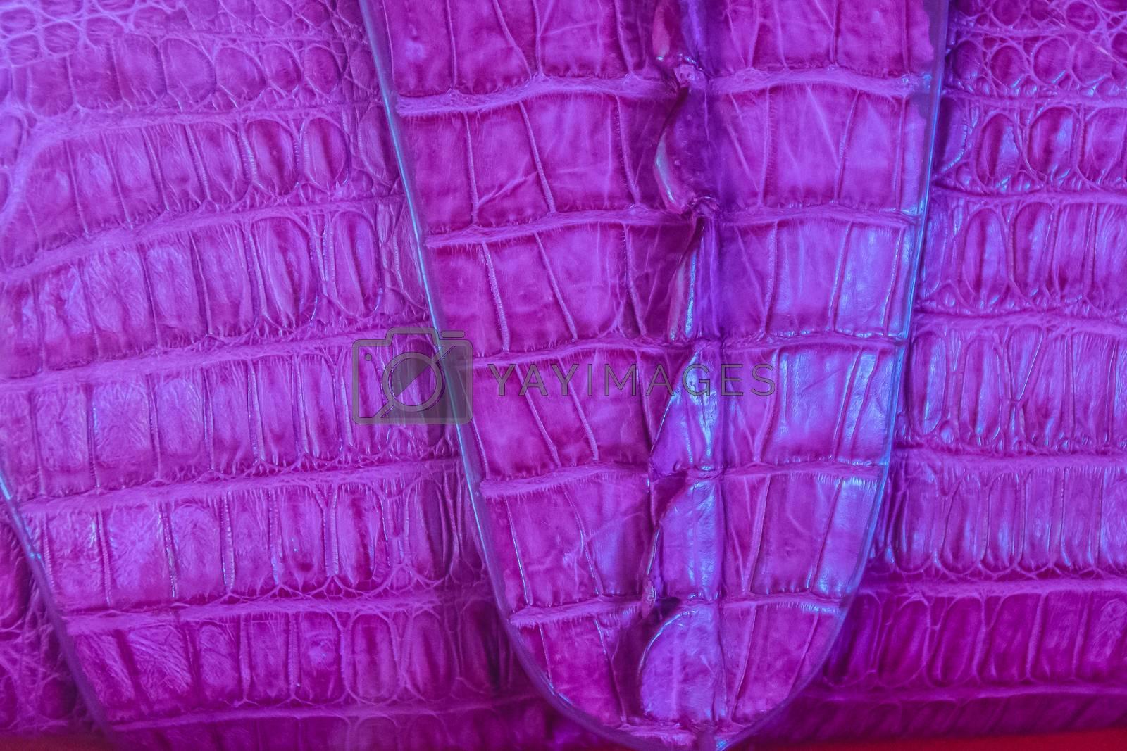 Beautiful purple crocodile leather handbag for sale in the luxury shop.