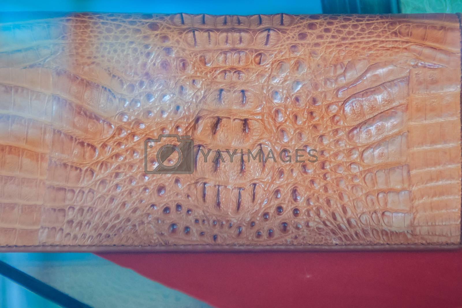 Beautiful brown crocodile leather handbag for sale in the luxury shop.