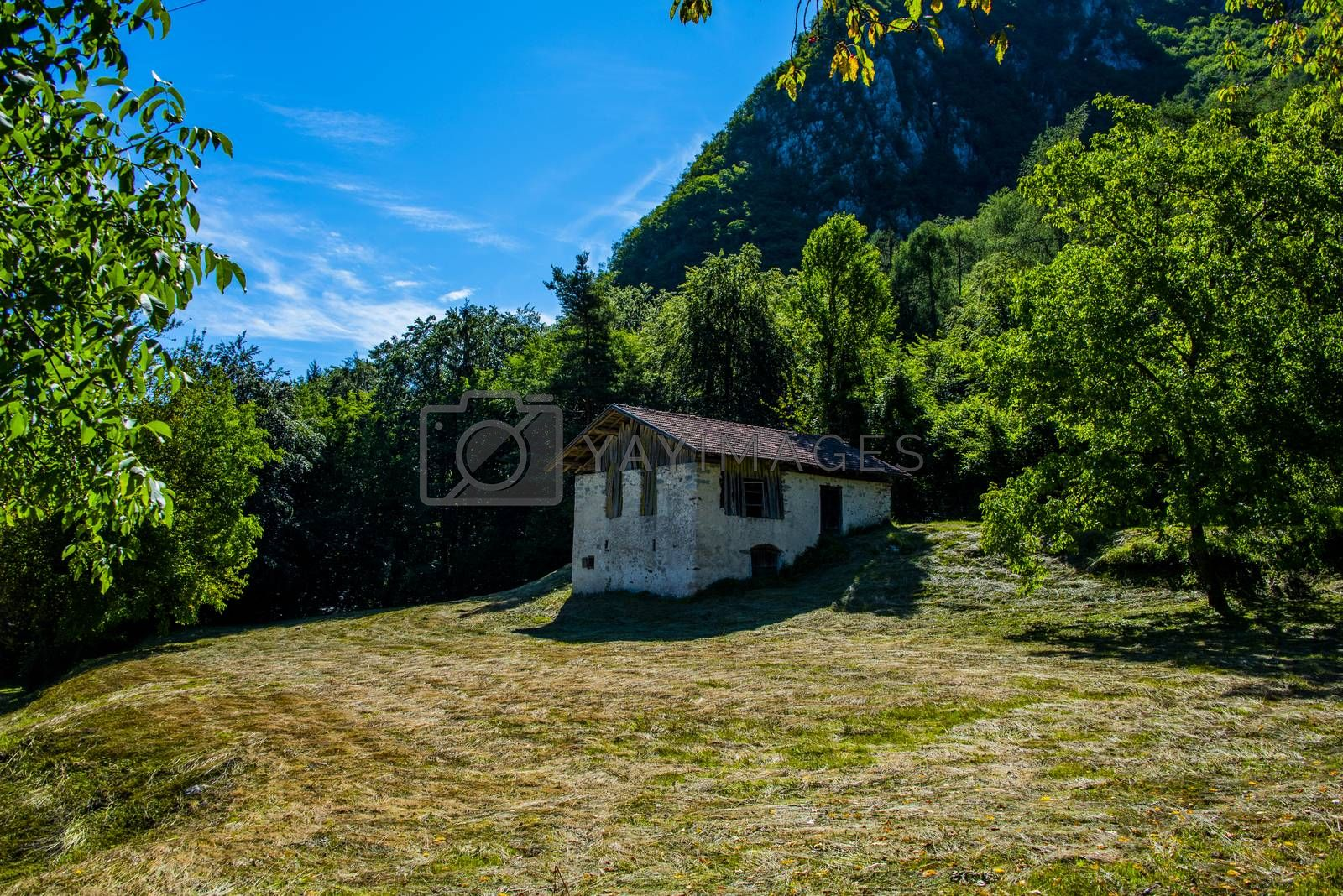 shed and lawn with cut grass one by AlviseZiche