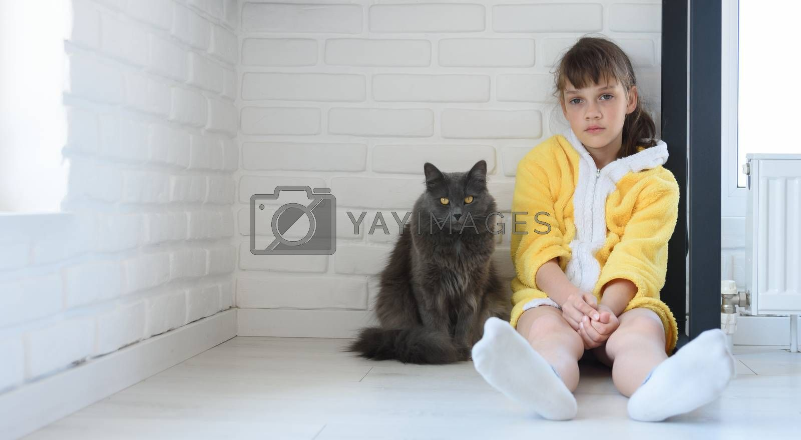 The punished girl sits in the corner of the room, a large domestic cat sits nearby by Madhourse