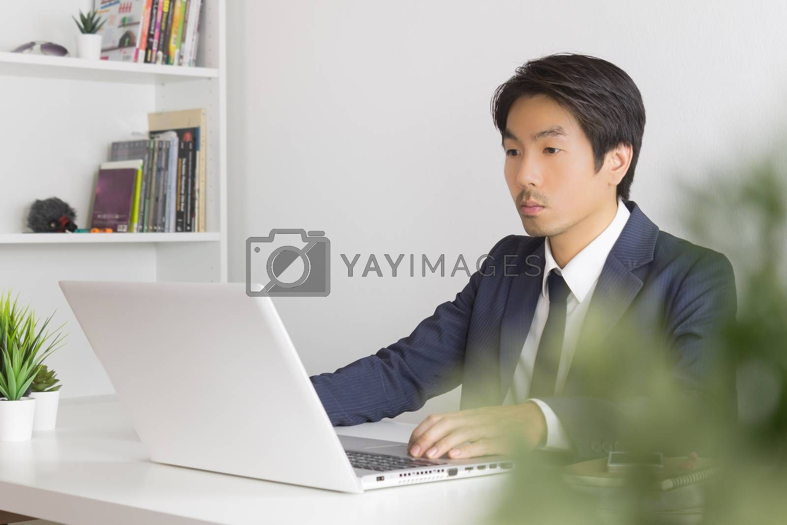 Asian Businessman In front of Laptop Monitor and Tree Foreground. Asian businessman working in office