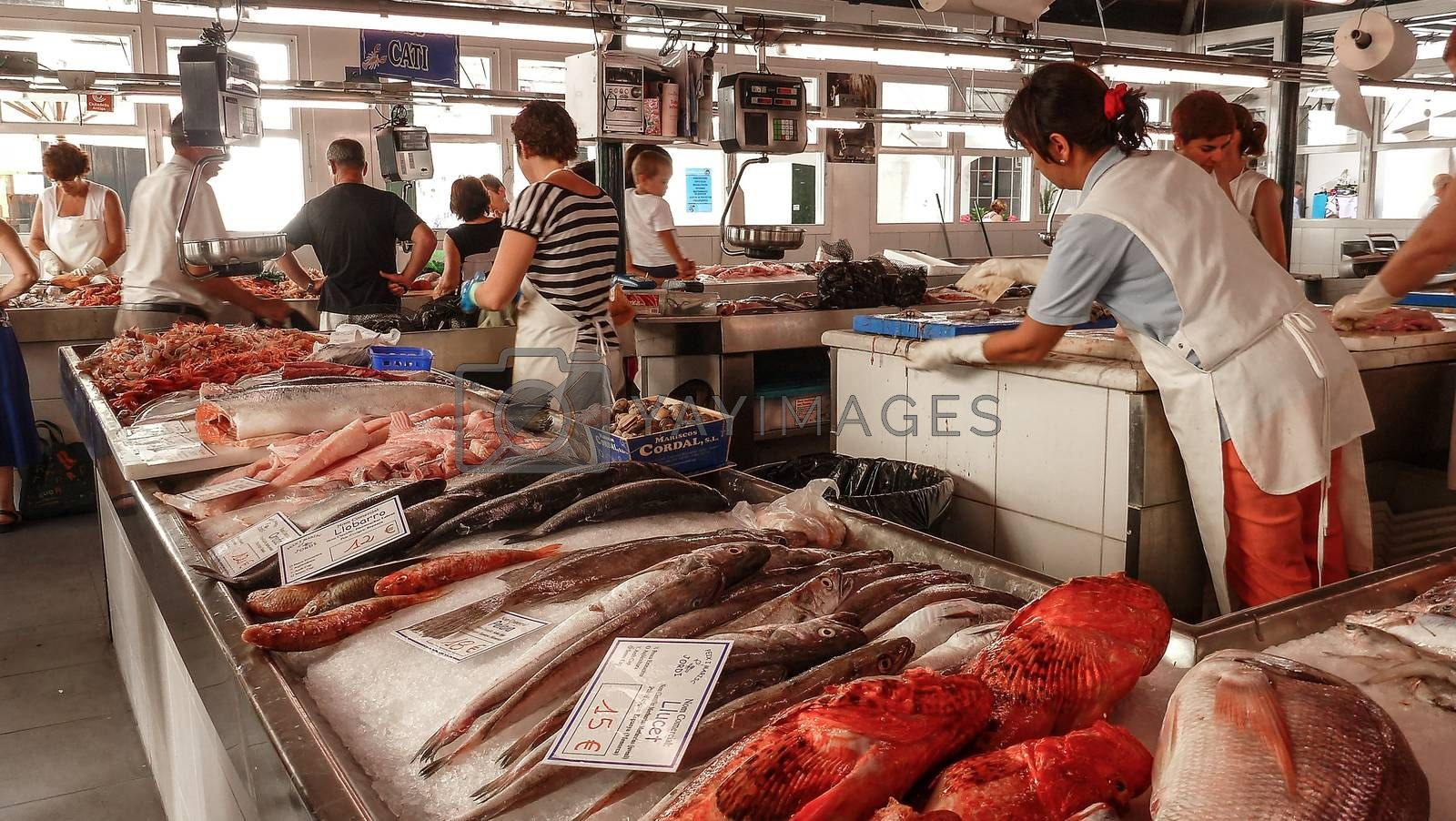 Menorca, Spain - june 28 - 2012 - View of the fish market in Ciutadella de Menorca, with various colorful fish for sale, price tags in the foreground and tourist customers
