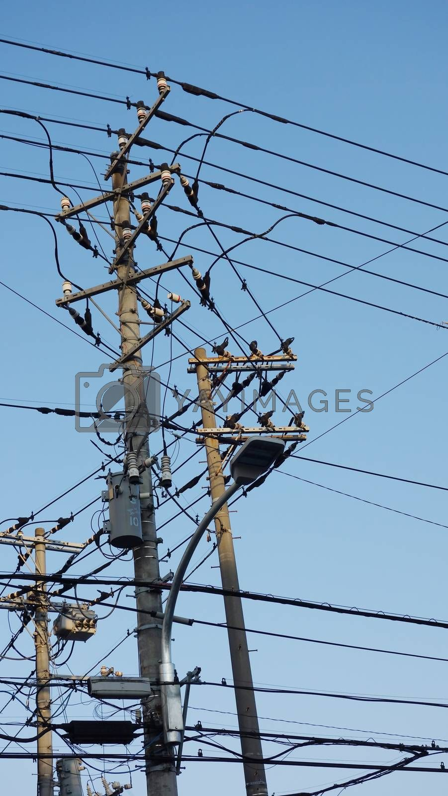 electric pole in Japan with blue sky background. Electricity Power Supply  transfer energy electrical tecnology on cable wire. Equipment for power lines on the electric pole.