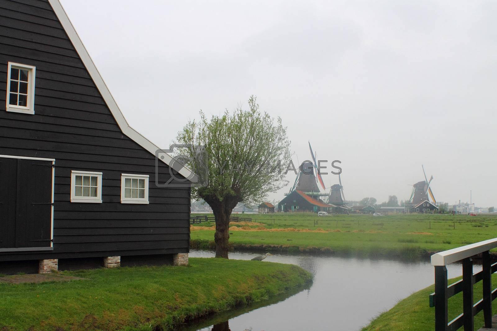 View of Zaanse Schans, Netherlands