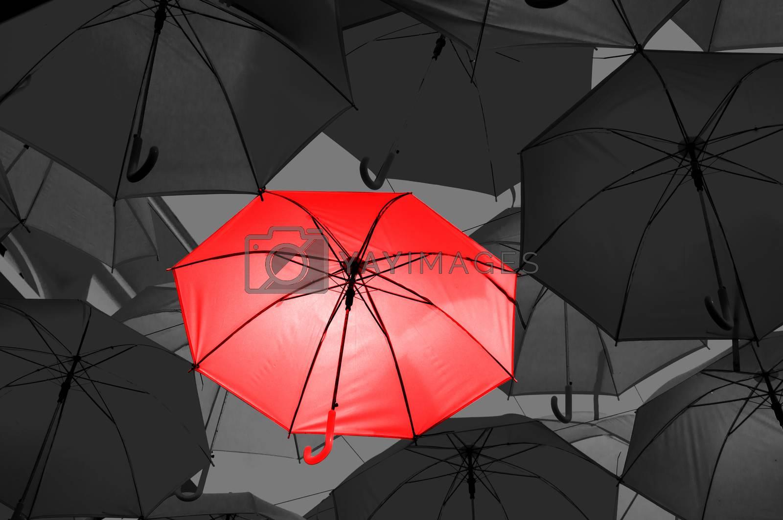 Red umbrella in black and white umbrellas by Nu1983
