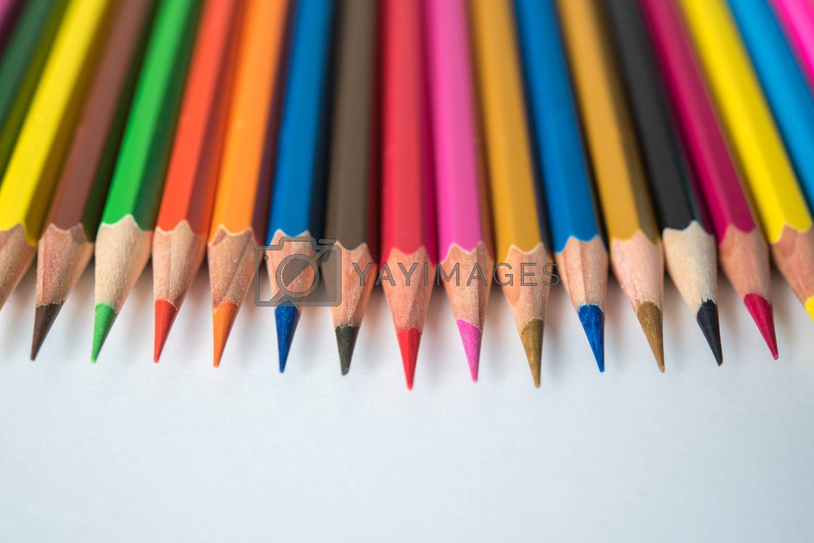 rows of multicolor pencil on white background by Lerttanapunyaporn